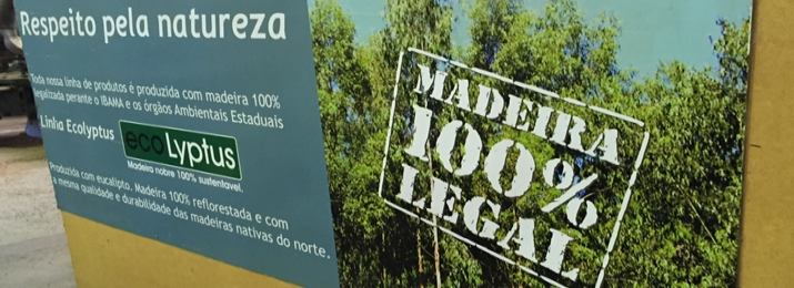 Esquadrias de Eucalipto de Alto Padrão - Portas e Janelas Premium - Sustentáveis